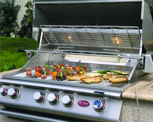 BBQ cleaning in Berkley by BBQ Repair Doctor.